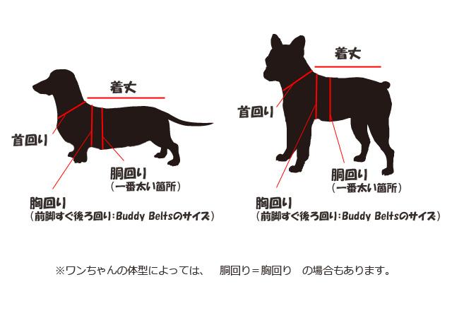 服、首輪用の犬のサイズの測り方