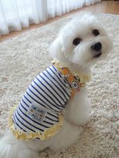 COCOちゃん BuddyBelts(バディーベルト) サンシャイン