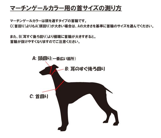 マーチンゲールカラー用の犬のサイズの測り方